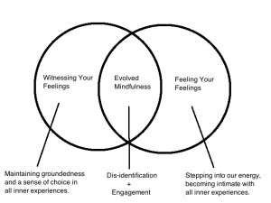 evolved-mindfulness-venn-diagram