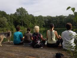 meditation community